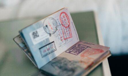 Cestovní doklady v podobě cestovního pasu.