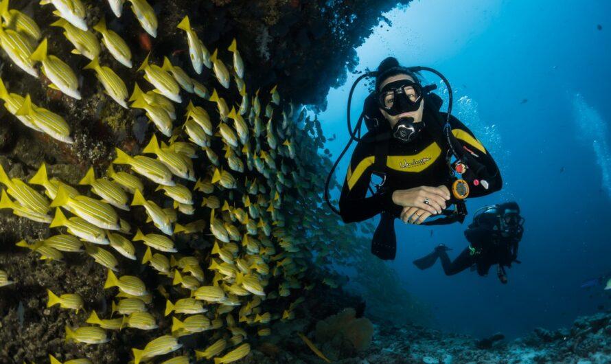 Potápění na dovolené může nabývat různých podob